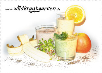 Chia-Smoothie-mit_Rand-Kopi