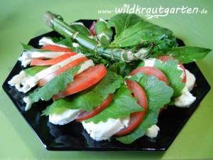 Tomate-Mozarella-Wildkraut - eine andere Variante