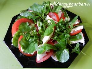 Tomate-Mozarella-Wildkraut-Teller