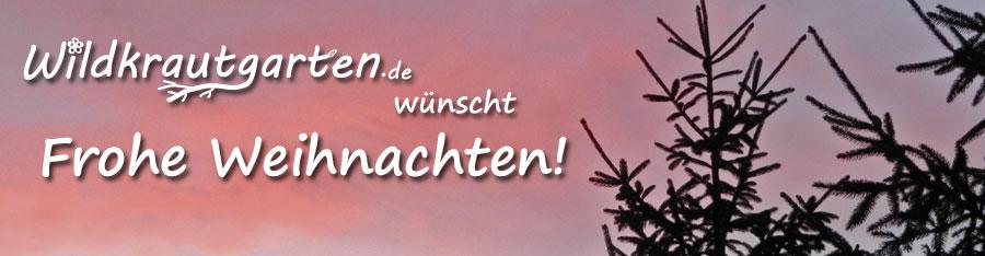 Wildkrautgarten_FroheWeihnachten