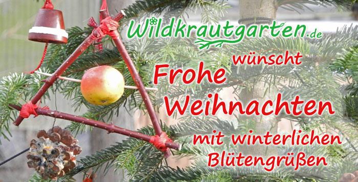 Wildkrautgarten.de wuenscht Frohe Weihnachten 2013
