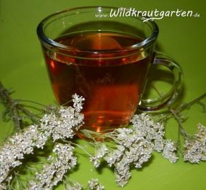 Kater-Tee