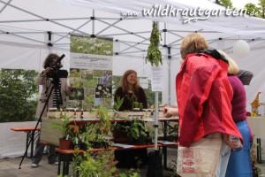 Wildkrautengarten am Kräuterstand mit Besuchern und Kamerateam vom Regionalfernsehen Harz